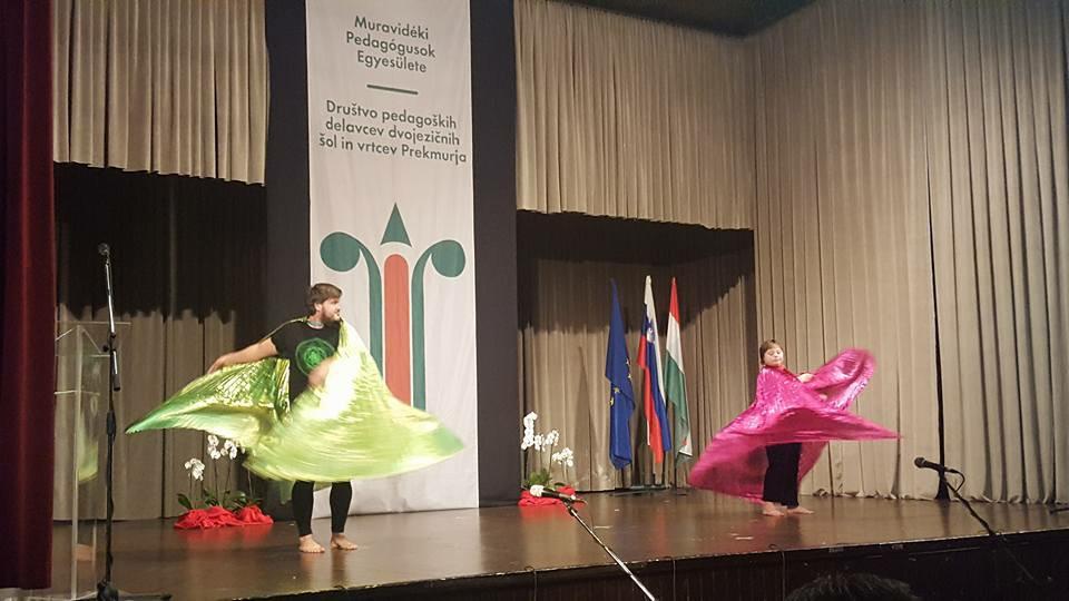 Društvo pedagoških delavcev dvojezičnih šol in vrtcev je praznovala 10. obletnico/ A Muravidéki pedagógusok egyesülete fennállásának 10. jubileumát ünnepelte