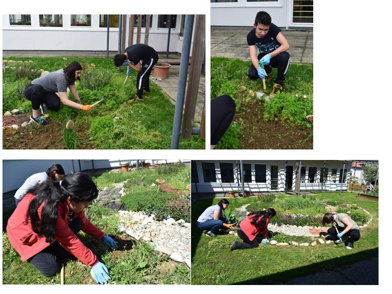 UNESCO: Vzgajajmo zelišča/ UNESCO: Neveljünk gyógynövényeket