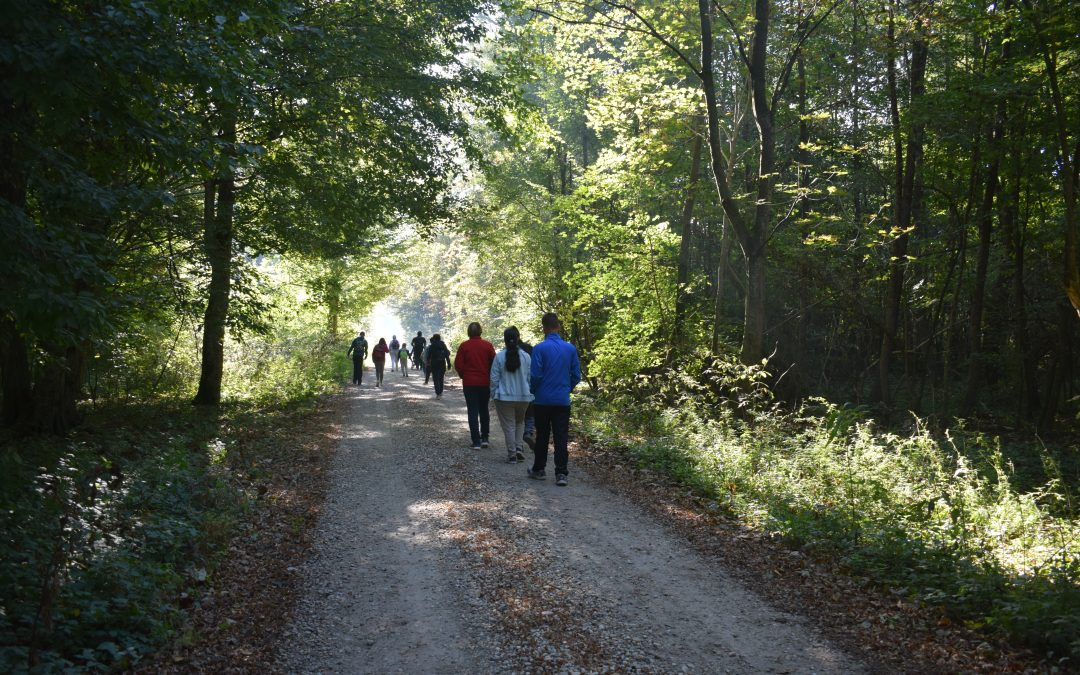 Jesenski športni pohod/ Őszi sportgyalogtúra
